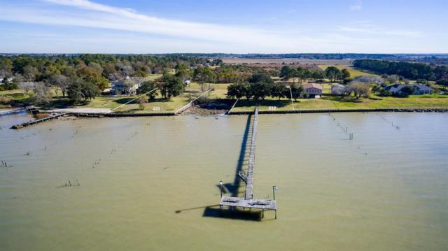 420 Channelview Drive, Anahuac, TX 77514 (MLS #78077137) :: Giorgi Real Estate Group