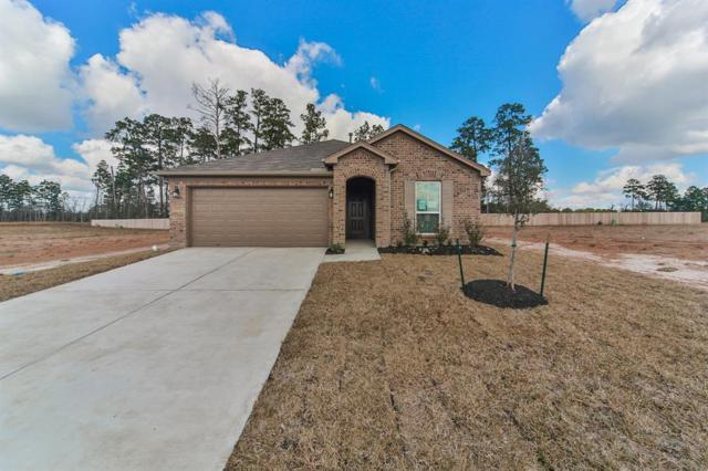 6510 Early Winter Drive, Humble, TX 77338 (MLS #78108915) :: Texas Home Shop Realty