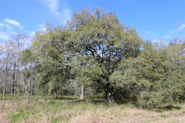 000 Deer Trail Drive, Wharton, TX 77488 (MLS #78136253) :: Giorgi Real Estate Group