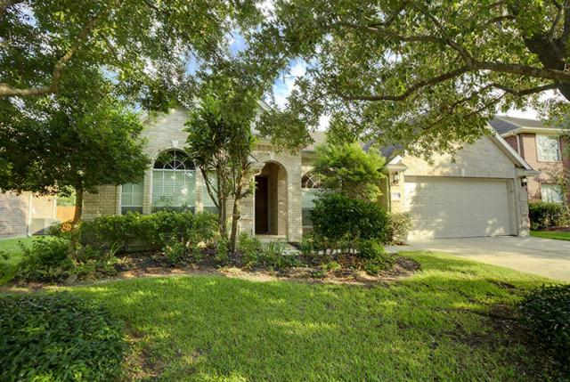 23231 S Warmstone Way, Katy, TX 77494 (MLS #78157154) :: Team Sansone
