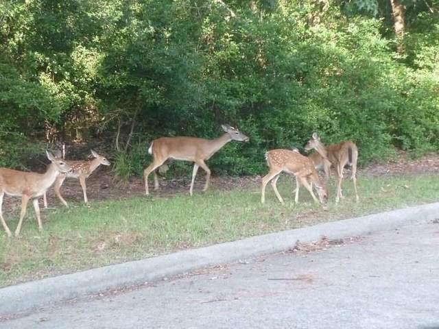 3322 Longfellow Circle, Montgomery, TX 77356 (MLS #78229892) :: The Bly Team