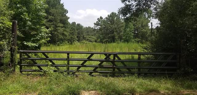 TBD County 4494, Hillister, TX 77624 (MLS #78256560) :: The SOLD by George Team