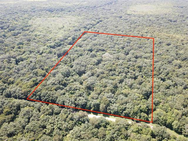 Tract 6 Private Road 648 Street, Cedar Lake, TX 77425 (MLS #78257167) :: The Freund Group