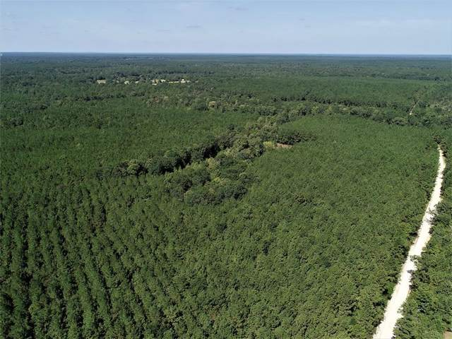 NA Groveton Flat Prairie Road, Groveton, TX 75845 (MLS #78273420) :: Bray Real Estate Group