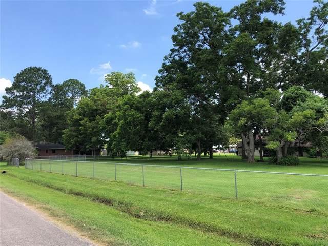 0 Pecan Drive, Brazoria, TX 77422 (MLS #78349214) :: Lerner Realty Solutions