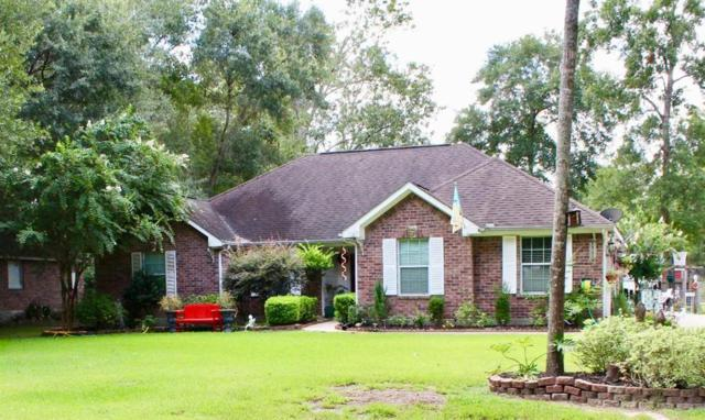 2402 Brutus Drive, New Caney, TX 77357 (MLS #78361111) :: The SOLD by George Team