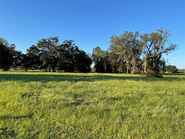 1620 Frontier Trail, Angleton, TX 77515 (MLS #7839786) :: Caskey Realty