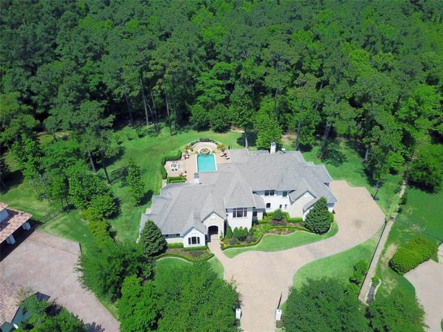 15 Bridle Oak Court, The Woodlands, TX 77380 (MLS #78522964) :: Christy Buck Team