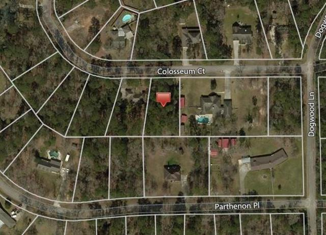 Lot 30 Colosseum, Roman Forest, TX 77357 (MLS #78595762) :: Connect Realty