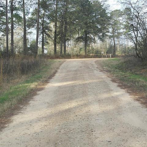 160 Bull Run, Livingston, TX 77351 (MLS #78721346) :: Giorgi Real Estate Group