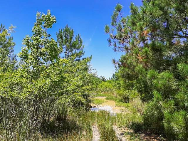 00 Pinewood Forest, Devers, TX 77538 (MLS #78753721) :: The SOLD by George Team