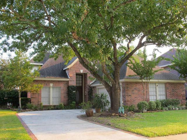 22323 Cove Hollow Drive, Katy, TX 77450 (MLS #78810904) :: Texas Home Shop Realty
