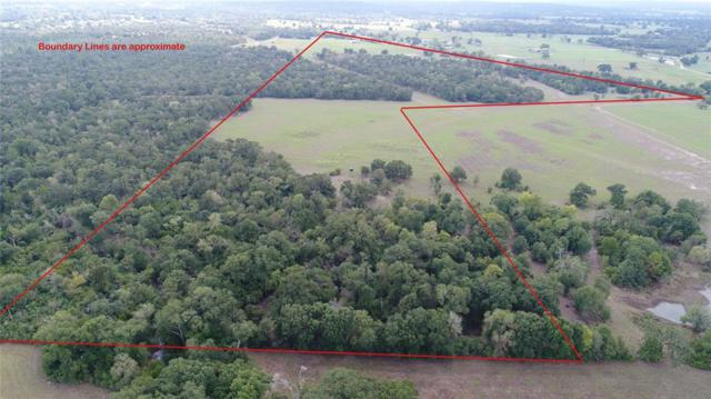 79.86 Acres County Road 155, Bedias, TX 77831 (MLS #78824158) :: Fairwater Westmont Real Estate
