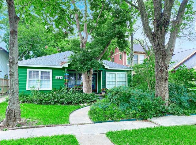 527 Harvard Street, Houston, TX 77007 (MLS #79005632) :: Giorgi Real Estate Group