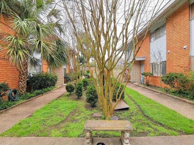 5538 Holly Street #308, Houston, TX 77081 (MLS #79046434) :: Phyllis Foster Real Estate