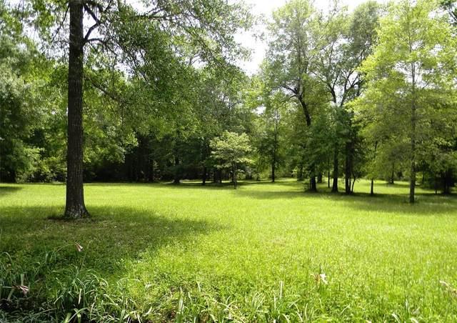 30975 Oakbourne Drive, Waller, TX 77484 (MLS #79079082) :: Phyllis Foster Real Estate