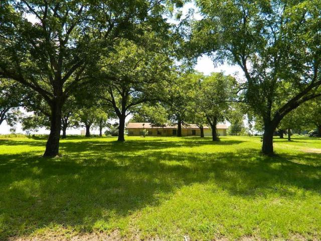 825 Fm 80, Teague, TX 75860 (MLS #79138784) :: The SOLD by George Team