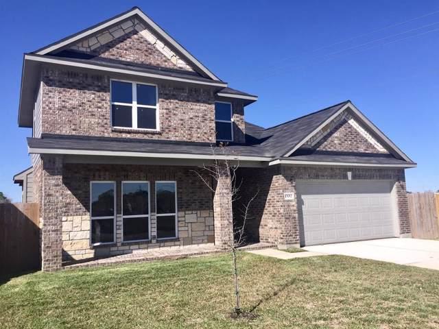 15012 Briarcraft Drive, Missouri City, TX 77458 (MLS #79152305) :: Caskey Realty