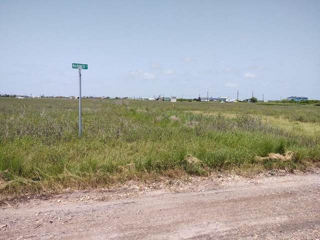 15235 Terrapin, Sargent, TX 77414 (MLS #7917764) :: The Bly Team