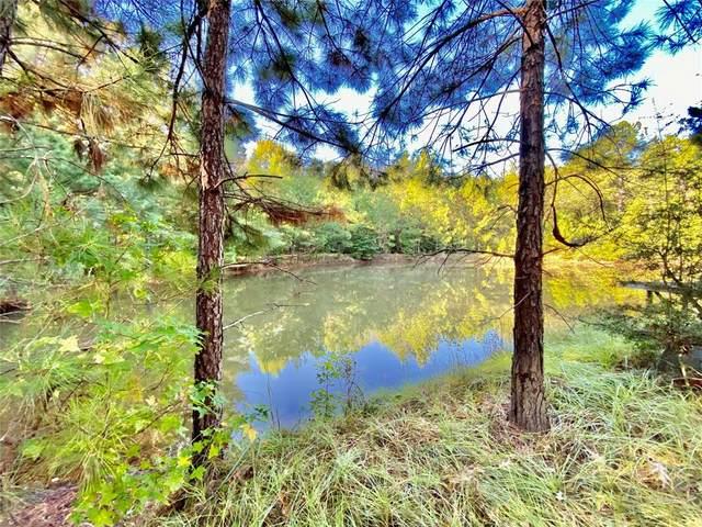 TBD County Road 2077, Woodville, TX 75979 (MLS #79211903) :: Rachel Lee Realtor