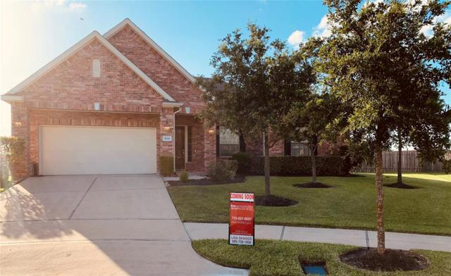 5202 Silver Sage Lane, Rosharon, TX 77583 (MLS #79215600) :: Fine Living Group