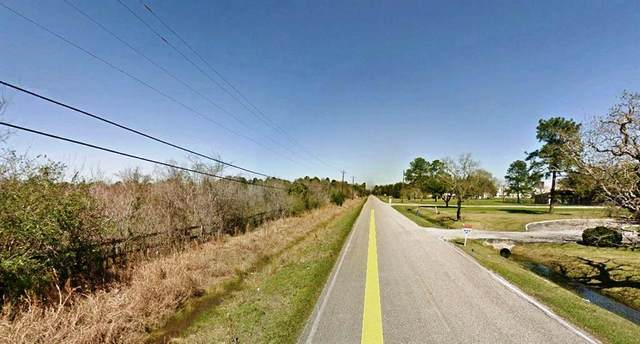 TBD Roy Road Roads, Pearland, TX 77581 (MLS #79265694) :: Homemax Properties
