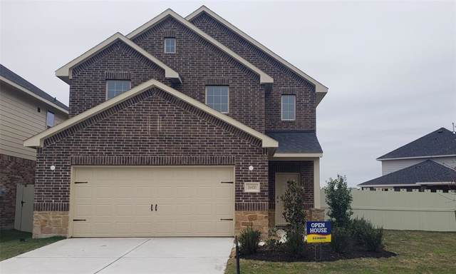 16430 Rosary Pea Place, Conroe, TX 77385 (MLS #79284243) :: The Home Branch