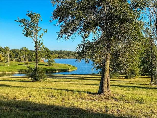 195 Peninsula Dr Drive, Livingston, TX 77351 (MLS #79327214) :: My BCS Home Real Estate Group