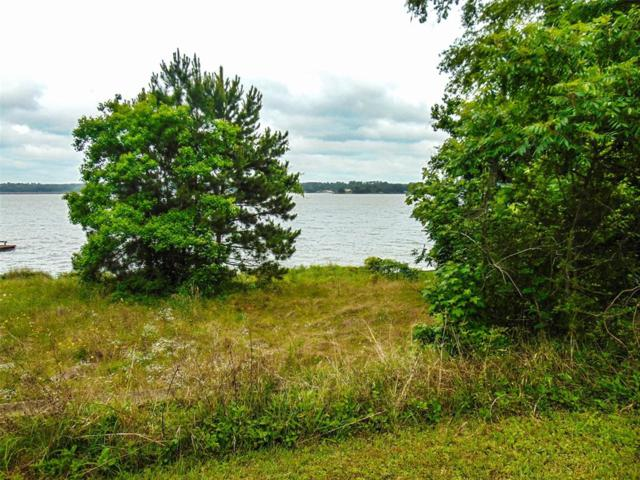 Na Tbd Lakefront Dr Drive, Onalaska, TX 77360 (MLS #79415056) :: The Heyl Group at Keller Williams