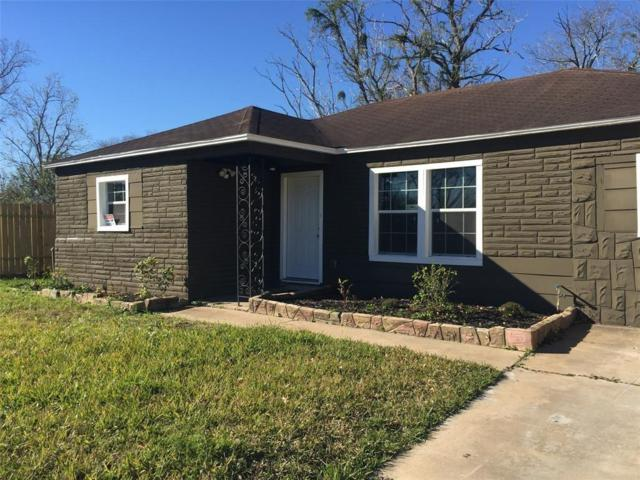10618 Roandale Drive, Houston, TX 77048 (MLS #79464832) :: Texas Home Shop Realty