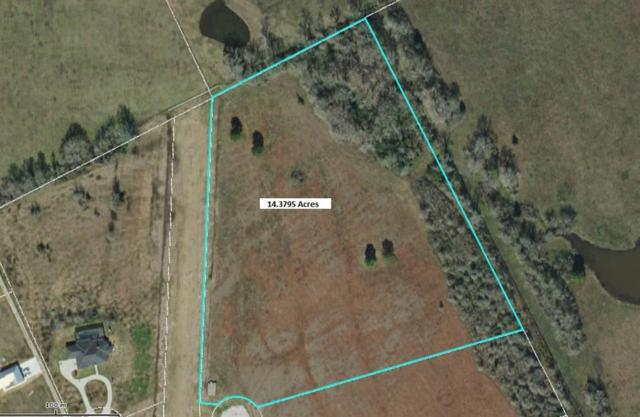 Lot 33 Ponderosa Drive, New Waverly, TX 77358 (MLS #79489844) :: TEXdot Realtors, Inc.