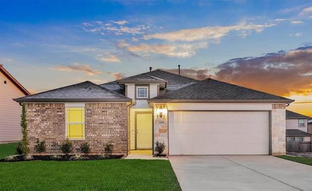 12408 Southern Trail Court, Magnolia, TX 77354 (MLS #79542876) :: Rachel Lee Realtor