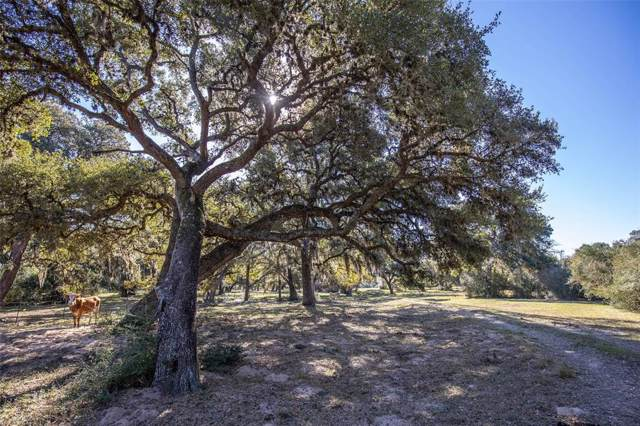 TBD County Road 125, Hallettsville, TX 77964 (MLS #79595566) :: The Jill Smith Team