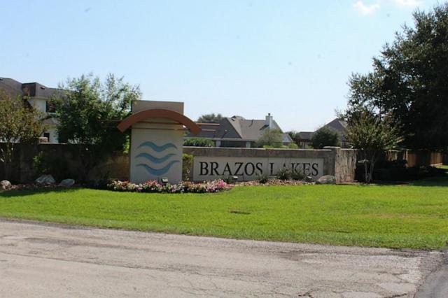 5719 Brazos Lakes Dr, Richmond, TX 77469 (MLS #79610171) :: See Tim Sell