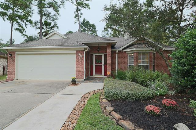 79 W Indian Sage Circle, The Woodlands, TX 77381 (MLS #79621053) :: Christy Buck Team