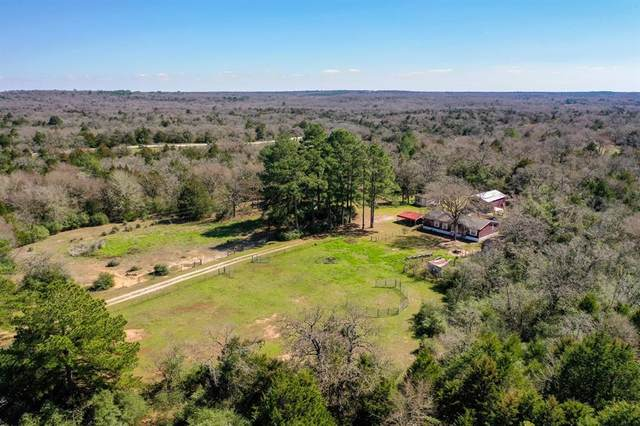 14010 Fm 977 W, Marquez, TX 77865 (MLS #79695541) :: Ellison Real Estate Team