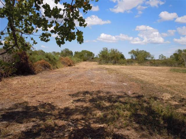 0000 County Road 248, Lissie, TX 77454 (MLS #797163) :: Texas Home Shop Realty
