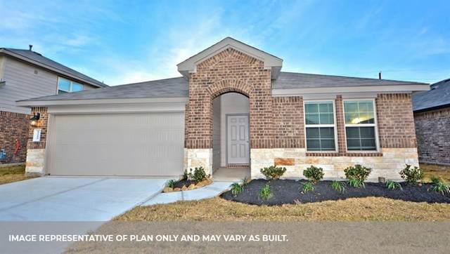 5619 Pleasant Falls Drive, Richmond, TX 77407 (MLS #7972175) :: NewHomePrograms.com LLC