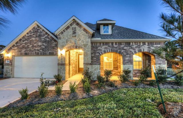 17814 Black Alder Lane, Spring, TX 77379 (MLS #79765228) :: Christy Buck Team