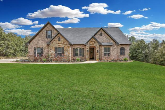 11412 Prince Henry Court, Montgomery, TX 77316 (MLS #79810896) :: Texas Home Shop Realty