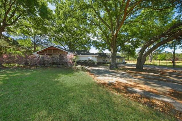 25518 Decker Prairie Rosehl Road, Magnolia, TX 77355 (MLS #79841968) :: The SOLD by George Team