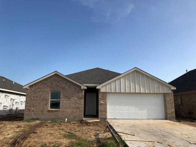 22931 Arcola Manor Court, Katy, TX 77493 (MLS #79847552) :: See Tim Sell