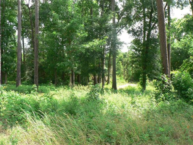 Lot 18 Tom Sawyer, Willis, TX 77318 (MLS #79864415) :: Fairwater Westmont Real Estate