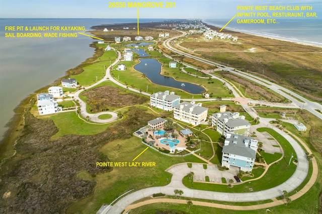 26550 Mangrove Drive #201, Galveston, TX 77554 (MLS #79885380) :: Connect Realty