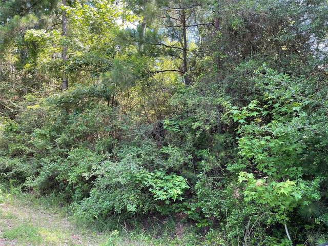 Lot 116 Seminole Drive, Trinity, TX 75862 (MLS #79890313) :: The Home Branch