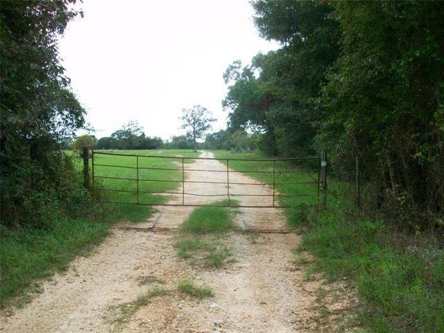 TBD J C Walker Loop Loop, Bedias, TX 77831 (MLS #79922826) :: The Johnson Team