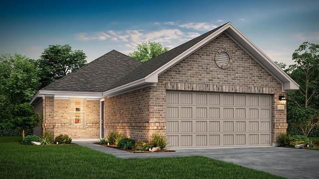 116 Shadow Leaf Trail, Willis, TX 77378 (MLS #79968230) :: Lerner Realty Solutions