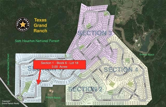 1-6-18 Dedication Trail, Huntsville, TX 77340 (MLS #79978432) :: Lerner Realty Solutions