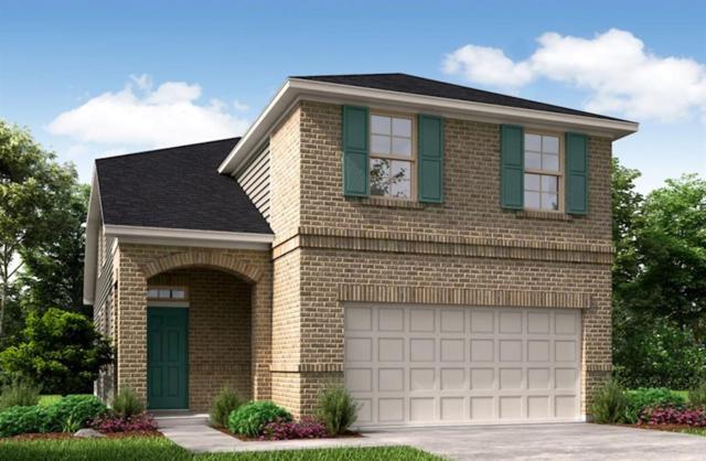 21415 Bluebonnet Cove Court, Katy, TX 77449 (MLS #80028979) :: The Parodi Team at Realty Associates