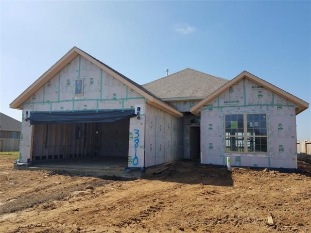 3810 Kellys Falls, Katy, TX 77494 (MLS #80079224) :: Texas Home Shop Realty